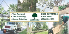 Fast and affordable #landclearing company in Fernandina Beach, FL https://t.co/zT5VkPKarO (treeservicejax) Tags: tree service jacksonville trimming removal treeservicejacksonville
