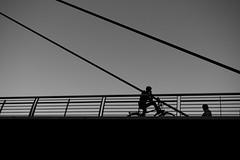 Bridge Smalltalk. (janhartmannfotografie) Tags: 20 2016 25082016 50 50aa 50mm apo aposummicronm asph august bw bayern black blackwhite blackandwhite city cityscape cron deutschland evening germany hartmann hof jan janhartmannfotografie leica leicammonochrom m9m mm mm1 messsucher mono monochrom objektiv open people photography prime rangefinder schwarz schwarzweis summicron summicronm weis white wide architecture architektur bike boy bridge brcke camera f20 formen geometrie geometry guy kamera lens light schatten shadow smalltalk talk