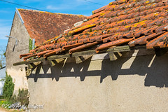 Roof beams, the Nivre (serial_snapper) Tags: france building rpubliquefranaise nivredpartement bourgognefranchecomtrgion ciez bourgognefranchecomt fr