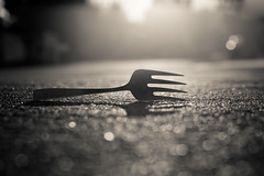 a fork in the road - 234/366 (auntneecey) Tags: fork sunrise aforkintheroad monochrome mono blackandwhite 366the2016edition 3662016 day234366 21aug16 odc shallowdepthoffield sliderssunday