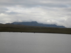 IMG_8871 (griffpops_deptford) Tags: iceland icelandnationalparks pingvellier menwithbeards ice snow gravelroads mountains