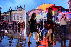 """Rainy Days"" Piccadilly Circus, London, UK (davidgutierrez.co.uk) Tags: london architecture city photography davidgutierrezphotography nikond810 nikon art urban londonphotographer color night travel uk rain piccadillycircus rainydays bluehour twilight photographer buildings england unitedkingdom  londyn    londres londra europe beautiful cityscape davidgutierrez capital structure britain greatbritain nikon2485mmf3545gedvrafsnikkor nikon2485mm d810 building street reflection umbrella candid"