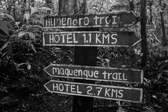 Trail signs (mjarayab) Tags: trail blackandwhite signs rotulos bosque jungle canon canonphoto t3i 600d trees tree photo costarica photography travel travelphoto travelphotography viajes backpacking