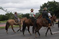 DSC_5462 (neyde zys) Tags: bandadabrigada brigadamilitar desfilefarroupilha gauchos indumentaria prendas tradicao