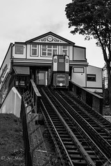 Scarborough Cliff Railway, the tramway opened in 1875 (Sue_Shaw) Tags: scarborough yorkshire cliffrailway railway tram lift pull tracks nostalgic nostalgia history historic transport carriage canon canon80d canoneos cliff cliffside steep blackandwhite monochrome train