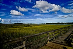 View from my sisters pier. - Beaufort South Carolina (Meridith112) Tags: marsh grass seagrass cordgrass clouds cloud sky bluesky pier dock beaufort beaufortcounty lowcountry southcarolina south sc nikon nikon2485 nikond610 august summer 2016 batterycreek harborriver