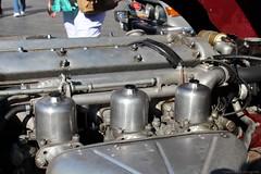 1968 - Jaguar E-Type - DL-13-32 -6 (Oldtimers en Fotografie) Tags: oldtimersfotografie fransverschuren fotograaffransverschuren oldcars oldtimers classiccars