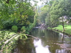 The River Conwy in Betws-y-Coed (southglosguytwo) Tags: 2016 holiday september water wales trees riverconwy betwsycoed