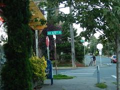 NW 65th Street in Ballard (Seattle Department of Transportation) Tags: seattle sdot transportation ballard nw 65th trees corner sign bike mailbox pedestrian