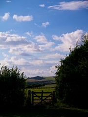 Dorset (Tom djr) Tags: england northdorset dorset landscape fields