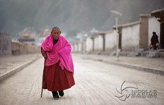 The lama's walk (nico3d) Tags: people tibet amdo tibetan tibetanplateau