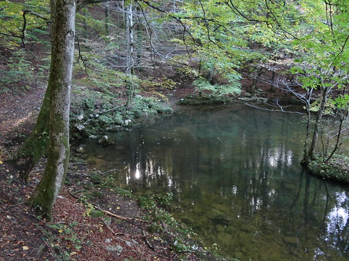 Carsic water source
