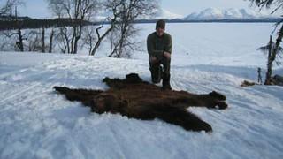 Alaska Moose and Bear Hunt - Dillingham 19