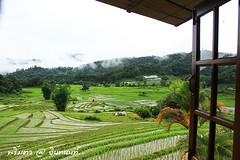 PhamonVillage-DoiInthanon-ChiangMai-Trip_By-P r i m t a a_E10886166-028