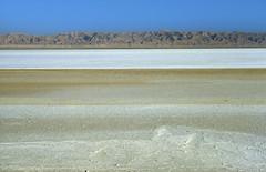 Utah? No, Tunisia! Chott El Jérid salt pan (ladigue_99) Tags: africa white sahara desert tunisia saltlake bianco tunisie deserto saltpan lagosalato ladigue99 chotteljérid شطالجريد shaţţaljarīd sciottgerid