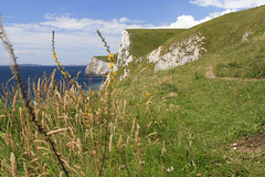 Durdle Door (Martins Skujans) Tags: ocean uk travel blue light sea sky cliff brown sun sunlight white plant flower colour green bird beach nature water grass yellow composition canon landscape bay coast leaf focus rocks raw day afternoon dof view bright blossom bokeh path walk turquoise group wave tourist cliffs bloom pro form colourful shape jpeg channel imagery durdledoor saladgreen ef24mmf14liiusm canonef24mmf14liiusm canoneos600d martinsskujans