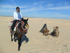 Douz Tunisia Jan 2013 068 (Matthew and Heather) Tags: horse sahara desert tunisia douz