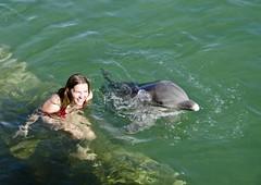 Friends :) (sylweczka) Tags: show sea water swim jessica dolphin cuba sylweczka