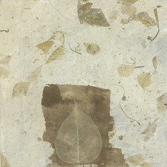 Wabi-sabi (ElenaRay) Tags: winter brown abstract art fall nature collage illustration painting square asian skeleton leaf transformation natural peaceful calm zen simplicity change veins meditation calligraphy enlightenment simple biology bodhi