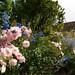 """Les jardins de l'Abbaye de Valsaintes près de Simiane la Rotonde • <a style=""""font-size:0.8em;"""" href=""""http://www.flickr.com/photos/90528120@N02/8389184581/"""" target=""""_blank"""">View on Flickr</a>"""