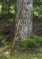 Bodacious Walking Stick (wplynn) Tags: john bodacious walking stick carve carving carved artist hiker appalacian trail artisan beaudet hiking staff pole