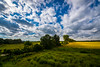 Sommer 2016 / Andau, Burgenland (jochenlorenz_photografic) Tags: andau burgenland austria austrianblogger austrianlandscape landscape clouds summer summer2016 colorful explore discover discovertheworld discoveraustria nikon nikond7100 nikonlandscape tokina1116mm28 tokina nature austriannature wildnature beautifullight beautifulnature