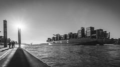 20160816-_SNE3212 (Sascha Neuroth) Tags: saschaneuroth nikond610 elbe hamburg container containerschiff auslaufen uasc barzan vessel schiff ship bubend bubendeyufer hafen harbor ponton sonnenstrahlen