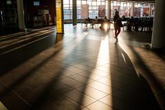 _DOO8639 (**) Tags:  dresden airport   delesideng travel    euro
