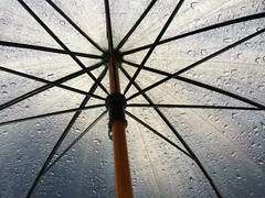 5:00 PM (gonzalezemily) Tags: umbrella rain