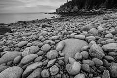 Boulder Beach 080216b copy (davidakoubian) Tags: acadianationalpark rockycoastline maine