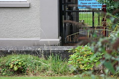 3449 (iainrmacaulay) Tags: ordnance survey flush bracket northern ireland