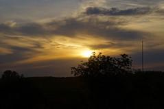 _DSC8106 (Maks.D) Tags: beauty  summer    sun    clouds sky tree  russian