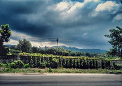 Heaven is here! <3 #streetphotography #Landscape #Hills #vintage #rain #storm #greeny (Ashrful Islm) Tags: landscape hills green heaven