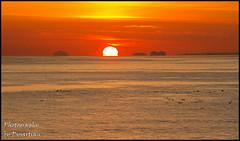 The Sun Rises Between the Bass Rock and Craigleith Island (Dysartian) Tags: uk sea water birds sunrise islands scotland ship fife britain cruiseship seabirds firthofforth kirkcaldy dysart fifecoastalpath craigleith msclirica craigleithisland birdsinwater thebassrock photographybydysartian dysartiian thesunrisesbetweenthebassrockandcraigleithisland