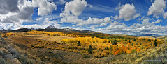 Fall Color in the Eastern Sierra (Darvin Atkeson) Tags: autumn sky panorama mountain snow mountains fall nature clouds skies fallcolor cloudy nevada scenic sierra snowcapped vision pines valley vista peaks aspen bridgeport sierranevada hwy395 395 mountainrange highway395 easternsierra darvin atkeson darv liquidmoonlightcom