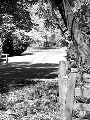 Country Drive (perfectshotphotographers) Tags: blackandwhite bw mountains monochrome landscape blackwhite country olympus monochromatic woodfence e620 olympuse620