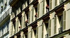 Shutters Paris (Gabriel Gets) Tags: windows shadow sunlight paris france september shutters windowbox 2012