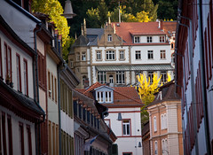 Mansion on the Hill Above Old Town - Heidelberg, Germany (ChrisGoldNY) Tags: travel autumn houses fall leaves yellow architecture buildings germany deutschland europa europe european forsale eu viajes posters albumcover alemania bookcover heidelberg altstadt oldtown towns vacations bookcovers albumcovers mansions chrisgoldny chrisgold chrisgoldphoto chrisgoldphotos