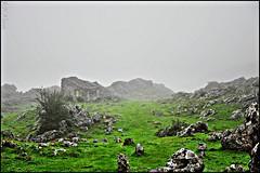 Desde Dentro (P.H.Alonso) Tags: asturias otoo niebla picosdeeuropa ordiales vegarredonda prpnpe5