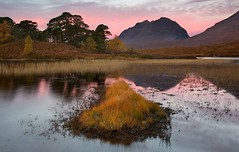 Sunrise in Glen Torridon (vathiman) Tags: sunrise reflections reeds scotland highlands loch torridon liathach