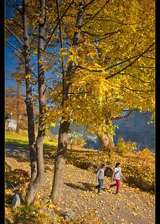 Swiss Autumn Time in Murren. October 22, 20012. No. 9910.