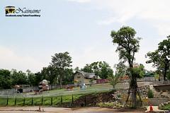 Kohka-Lampang_by-Nainame_E12353345-002