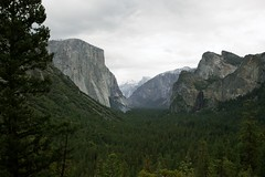 Yosemite Valley (Jordan Colley Visuals) Tags: california mountains green nature zeiss forest 35mm landscape grey october day quiet cloudy availablelight peaceful halfdome serene yosemitenationalpark elcapitan f8 ze 2012 yosemitevalley tunnelview iso640 distagont235 canon5dmkii