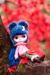 Little blue bear up a tree (ZedBee | Zo Power) Tags: blue autumn red cute fall leaves rouge doll kawaii blythe 50mmf14 bearhat westonbirtarboretum niftyfifty cancancat sweetpuppet
