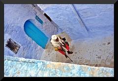 Senza fretta - Without hurry - Sin prisa (Dedalomouse Photos) Tags: old calle vieja morocco sin marocco vicolo marruecos azzurro without fretta chefchouen prisa senza chouen anziana hutty dedalomouse