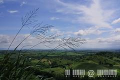 KhaoYai view by มาเรีย ณ ไกลบ้าน_G7202358-034