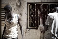 La Tabaski ou fête de l'Aïd-el-Kebir (stayhuman images) Tags: senegal mbour tabaski aïdelkebir fêtedumouton