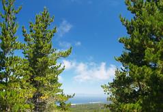 Across Monterey Bay (Stephen Gough) Tags: california pebblebeach 17miledrive montereycounty huckleberryhill