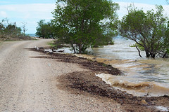 Sadie's Beach, Thursday Island (Witness King Tides) Tags: thursdayisland kingtide witnesskingtids sadiesbeach