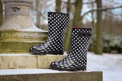 Chuva Stip regenlaarzen (katchoo.be) Tags: white snow black cute boots sneeuw chuva rubber polkadots short dots rubberboots rainboots bottesdepluie rubberlaarzen regenlaarzen bottesencaoutchouc sneeuwlaarzen